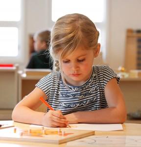 school-info-primary